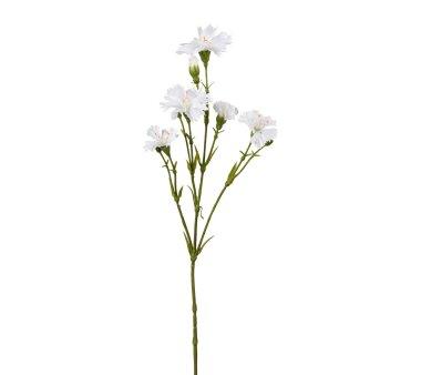 Kunstblume Lichtnelkenzweig, 5er Set, Farbe weiß,...