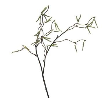 58 cm 3er Set wohnfuehlidee Kunstpflanze Kastanienzweig H/öhe ca Farbe Gold