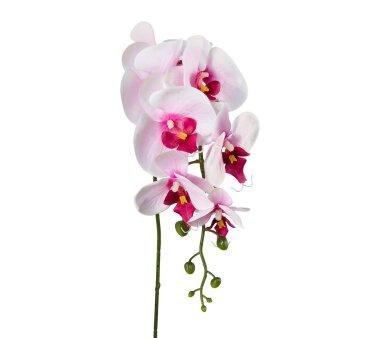 Kunstblume Phalenopsis, 5er Set, Farbe rosa, Höhe...