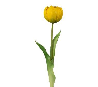 Kunstblume Tulpe gefüllt, 5er Set, gelb, Höhe...