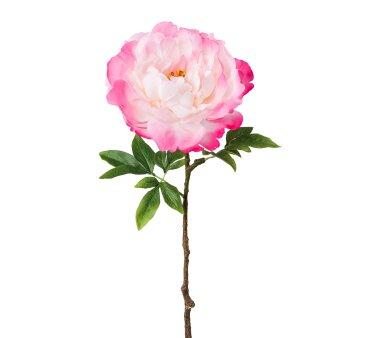 Kunstblume Peonie, 2er Set, rosa, Höhe ca. 66 cm