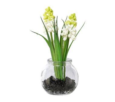 Kunstpflanze Muscari mit Gras, 5er Set, weiß,...
