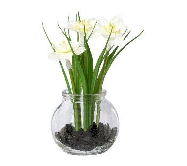 Kunstpflanze Narzissen mit Gras, 5er Set, weiß,...
