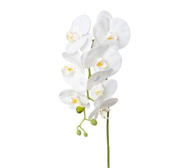 Kunstblume Phalenopsis (Orchidee), 3er Set, weiß,...
