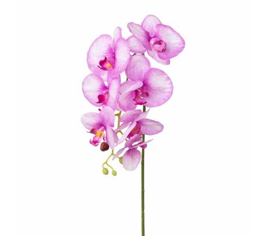 Kunstblume Phalenopsis (Orchidee), 3er Set, rosa,...