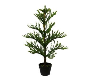 Kunstpflanze Araucarienbaum, grün, Höhe ca. 98 cm