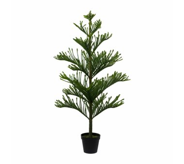 Kunstpflanze Araucarienbaum, grün, Höhe ca. 154 cm