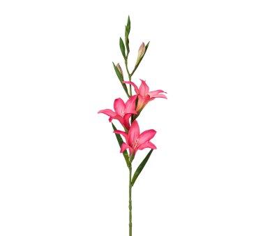 Kunstblume Gladiole, 3er Set, rosa, Höhe ca. 68 cm
