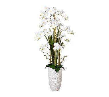 Kunstpflanze Phalaenopsis-Arrangement, weiß,...