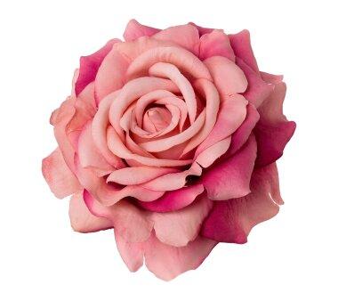 Kunstblume Rose mit Clip, 6er Set, altrosa, 8,5x10,5 cm