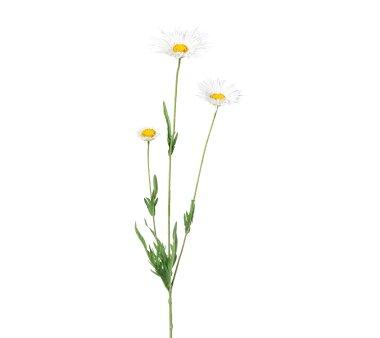 Kunstblume Doronicum, 5er Set, weiß, Höhe ca....