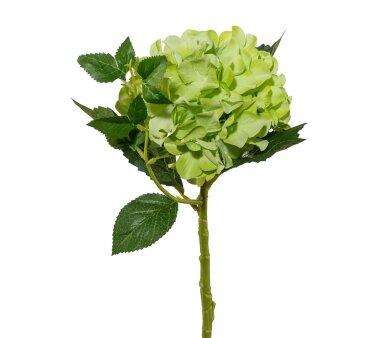 Kunstblume Hortensie, 3er Set, grün, Höhe ca....