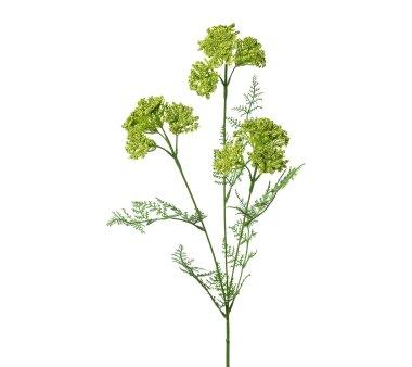 Kunstblume Achillea, 5er Set, grün, Höhe ca. 57 cm