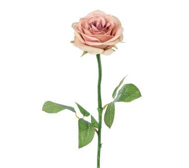 Kunstblume Rose, 5er Set, altrosa, Höhe ca. 60 cm