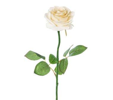 Kunstblume Rose, 5er Set, creme, Höhe ca. 60 cm