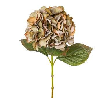 Kunstblume Hortensie, 2er Set, grün / rosa,...