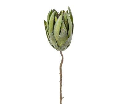 Kunstblume Prothea, 2er Set, grün, Höhe ca. 68 cm