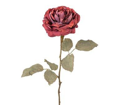 Kunstblume Rose, 3er Set, bordeaux, Höhe ca. 56 cm