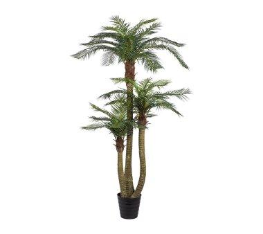 Kunstpflanze Arecapalme, grün, inklusive Topf,...