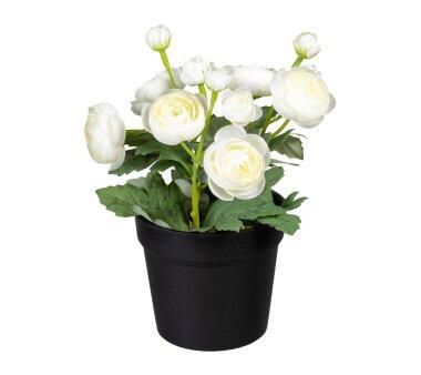 Kunstpflanze Ranunkel, 2er Set, weiß, inklusive...