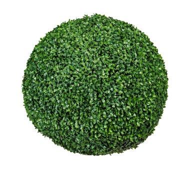 Künstliche Buchsbaum-Kugel, grün, Ø 53...