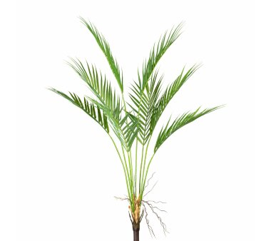 Kunstpflanze Arecapalme, grün, Höhe ca. 90 cm