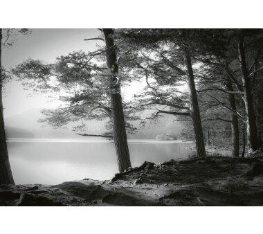AS Creation Vlies-Fototapete FOREST LAKE 118953, 8 Teile,...