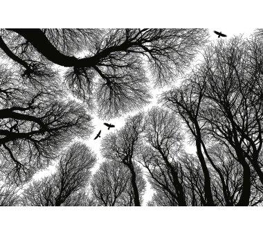 AS Creation Vlies-Fototapete ESCAPE 119045, 8 Teile,...