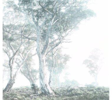 Vlies-Fototapete KOMAR, RAW MAGIC TREES, 3 Teile, BxH 300...