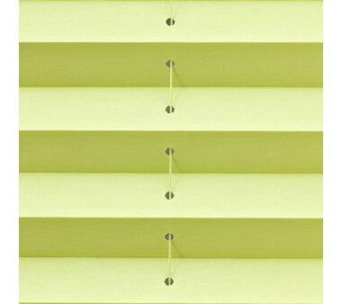 Lichtblick Plissee Klemmfix, ohne Bohren - Grün 80 cm x 200 cm (B x L)