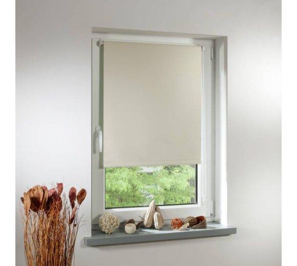 rollos blickdicht transparent g nstig online kaufen wohnfuhlidee. Black Bedroom Furniture Sets. Home Design Ideas