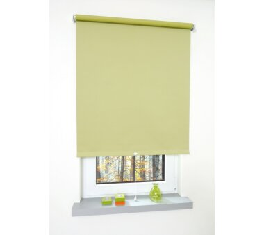 liedeco plissee dachfenster plissee gr n wohnfuehlidee. Black Bedroom Furniture Sets. Home Design Ideas