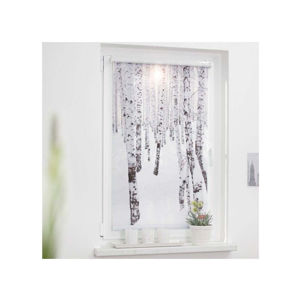 rollo seitenzugrollo birkenwald online kaufen. Black Bedroom Furniture Sets. Home Design Ideas